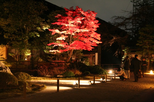 Koyo Chion-in by night
