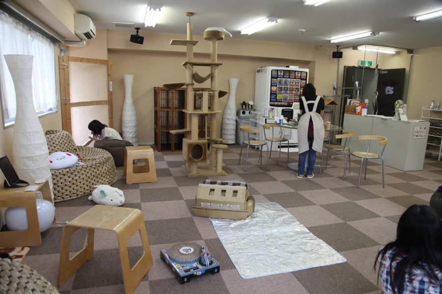 day 4 le japon le pays des chats road 2 japan. Black Bedroom Furniture Sets. Home Design Ideas