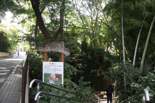 Todoroki Keikoku