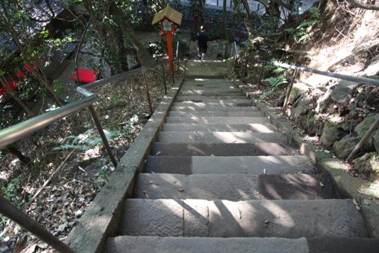 chemin grimpant
