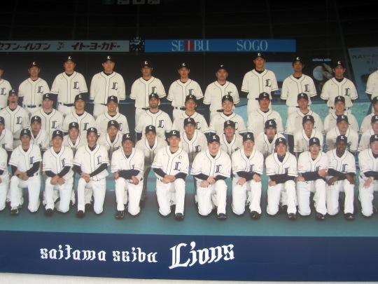 Baseball Lions