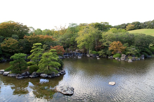 jardin traditionnel japonais