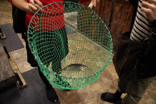 poisson peche