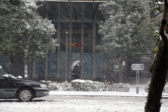 neige akiba rue