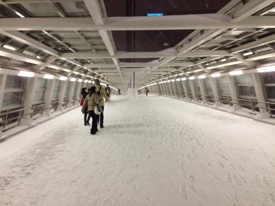 neige venus fort 2