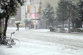 [Road 2 Japan 2014] Day 13-14 – Tokyo, une capitale sous la neige